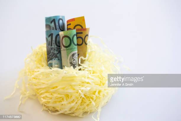 nest egg - finance and economy stock pictures, royalty-free photos & images