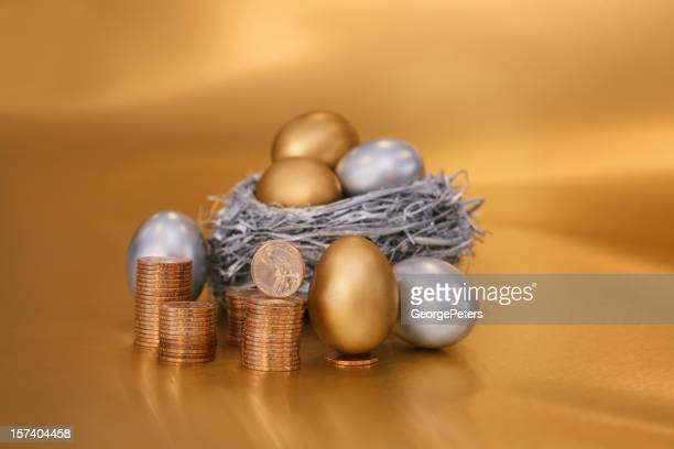 Nest Egg with Gold Coins