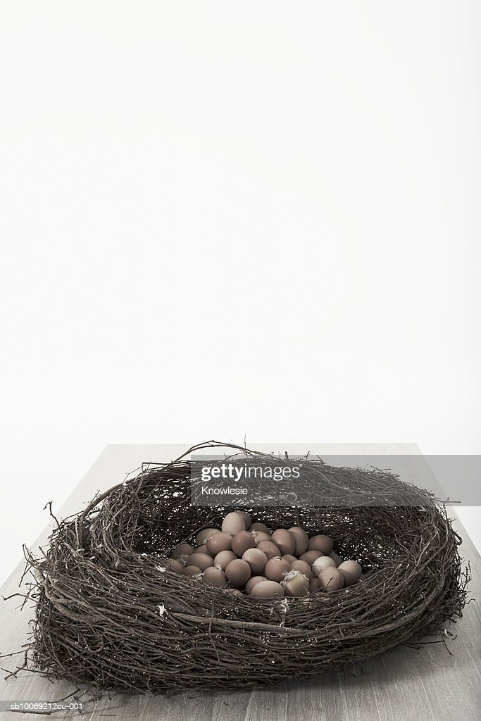 Nest full of eggs, studio shot : Stockfoto