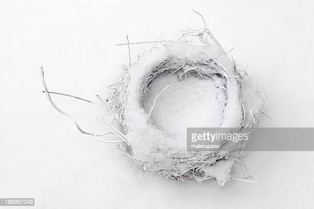 Nest en la nieve