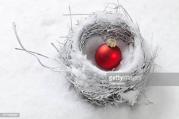 Nest im Schnee mit Christmas ball