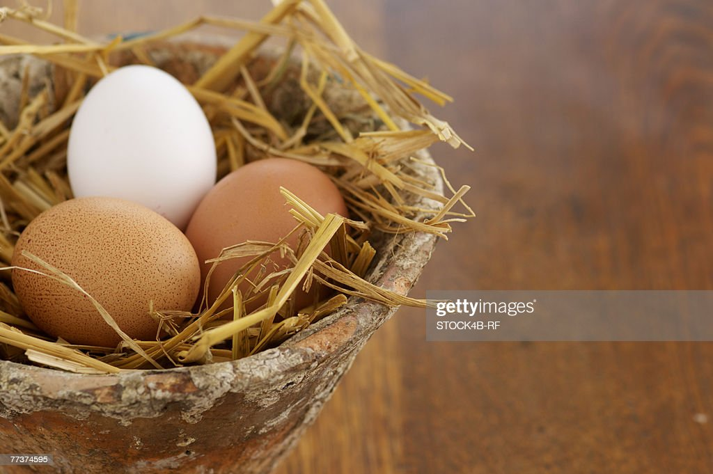 Nest made of straw with eggs in a flower pot, close-up : Photo