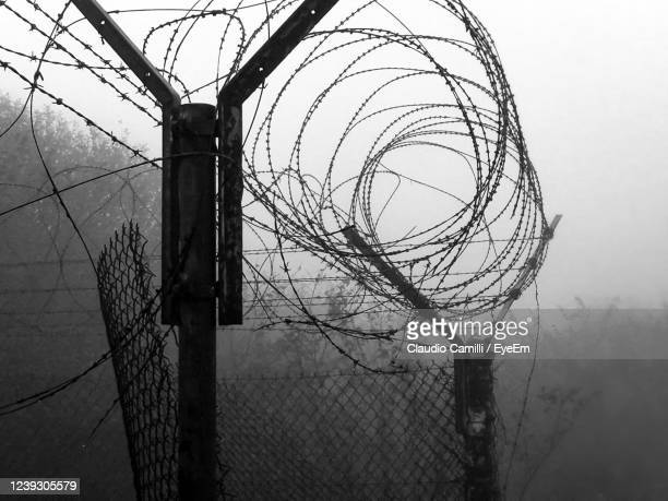 net with barbed wire and fog holes from a military base - fascism stock pictures, royalty-free photos & images