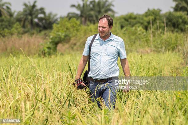 Netherlands' AfricaRice research institute Sander Zwart walks through a ricefied on November 21 2016 in Ouinhi southeastern Benin AfricaRice aims to...