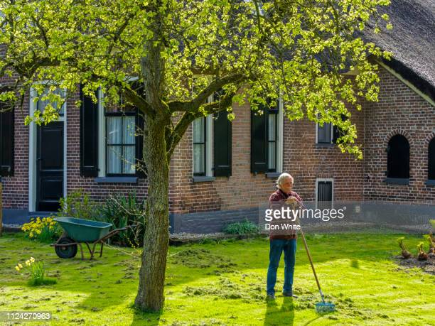 netherlands countryside - overijssel stock pictures, royalty-free photos & images