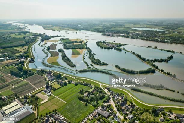 netherlands, dodewaard. waal river. flooded land - gelderland stock pictures, royalty-free photos & images