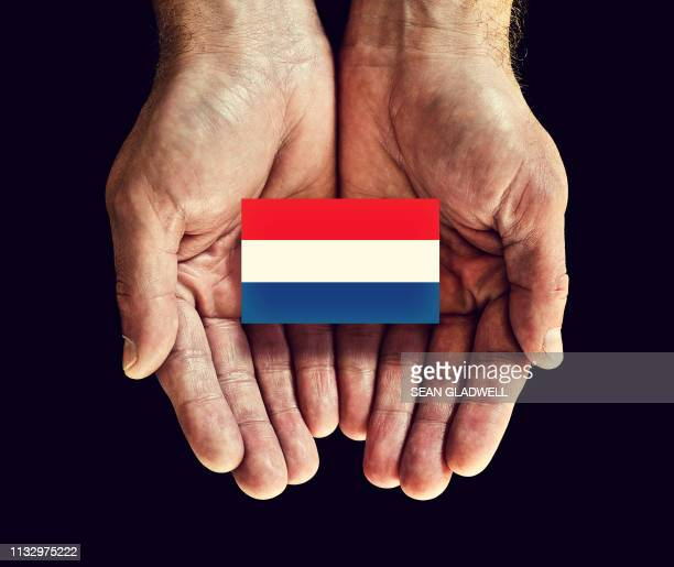 netherlands flag in hand - netherlands stock pictures, royalty-free photos & images