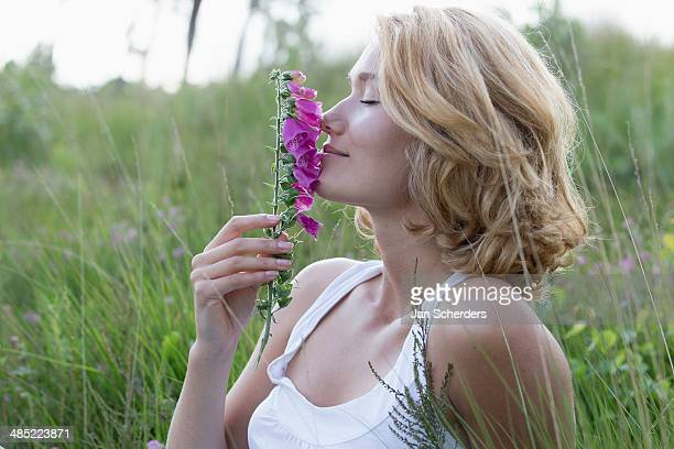 netherlands, gelderland, hatertse vennen, portrait of happy woman with purple flower - wavy hair stock pictures, royalty-free photos & images