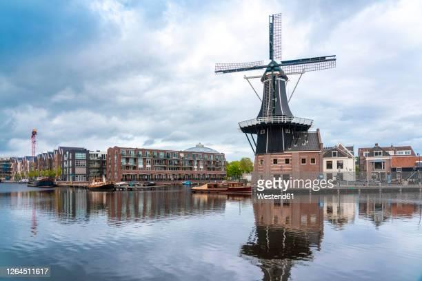 netherlands, north holland, haarlem, spaarne river canal and de adriaan windmill - haarlem fotografías e imágenes de stock