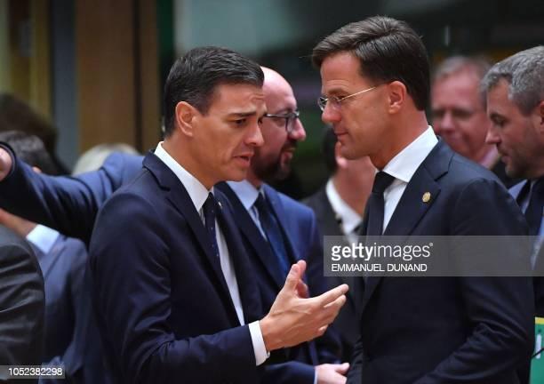 Estatura media en España - Página 3 Netherlands-prime-minister-mark-rutte-and-spanish-prime-minister-picture-id1052382298?s=612x612
