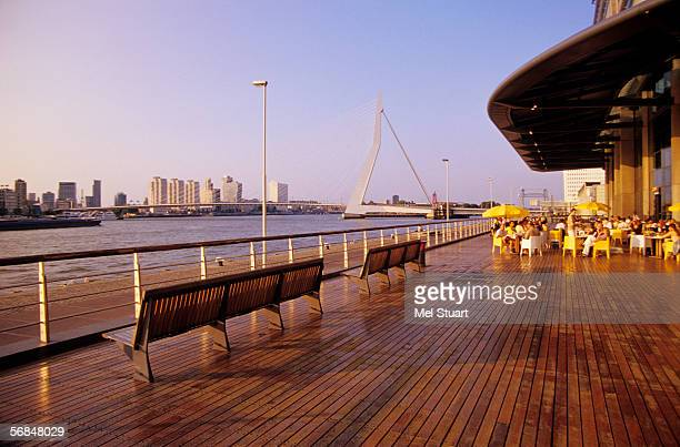Netherlands, Rotterdam, Erasmus bridge