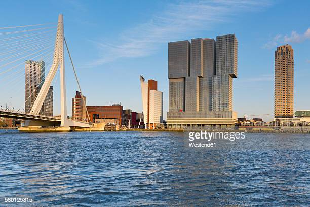 netherlands, rotterdam, view to skyline - rotterdam stock pictures, royalty-free photos & images