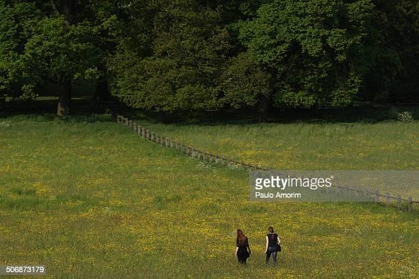 netherlands sonsbeek park - gelderland stock pictures, royalty-free photos & images