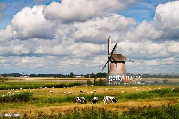 Netherlands - Windmill