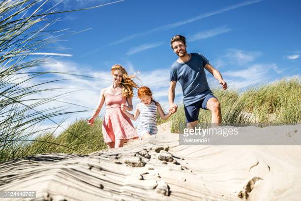 netherlands, zandvoort, happy family with daughter in beach dunes - family with one child stock pictures, royalty-free photos & images