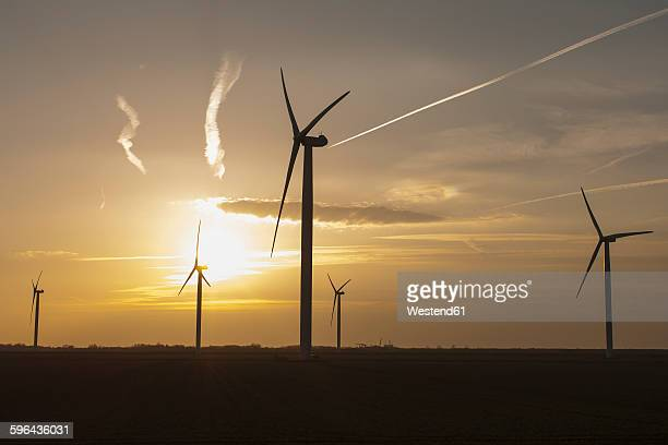 Netherlands, Zeeland, wind turbines at sunset