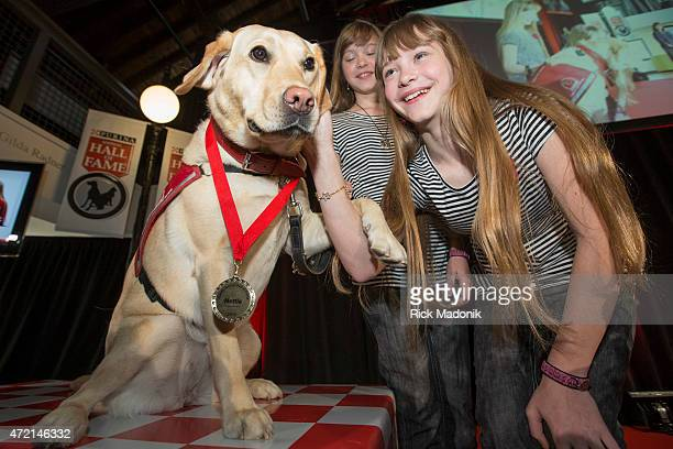 TORONTO MAY 4 Nettle a 2yearold yellow Labrador with Jade and Brooke Bordman The 12yearold twins have service dog Nettle because both girls have Type...
