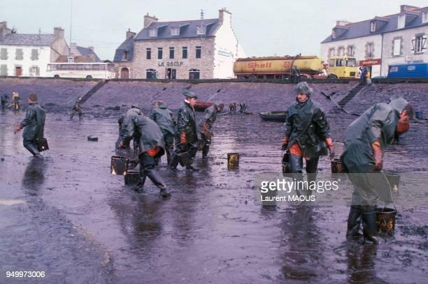 Nettoyage des plages bretonnes après le naufrage du pétrolier libérien Amoco Cadiz en mars 1978 en France