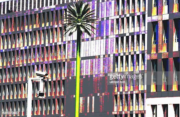 Neubau der BNDZentrale an der Chausseestrasse und Schwartzkopf strasse in Berlin MitteZwei kuenstliche Riesenpalmen zieren das Gelaende hinter dem...
