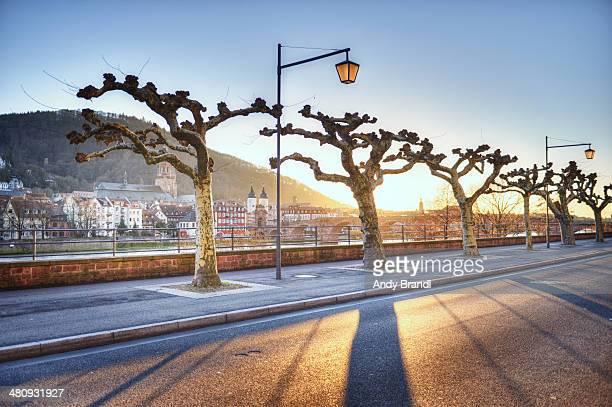 Neuenheim Promenade with Old Town (Heidelberg)