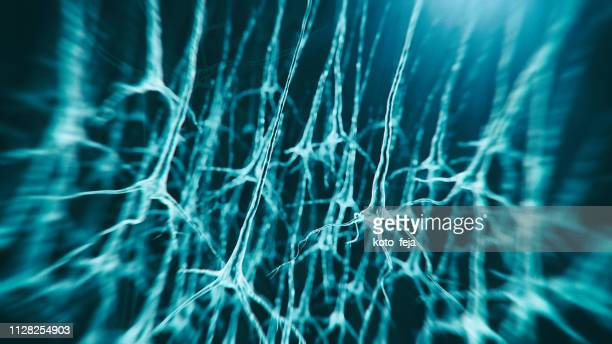 neuron system - sem stock pictures, royalty-free photos & images