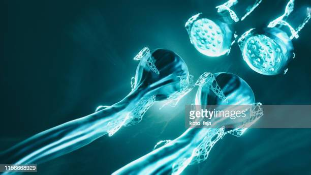 neuron system - motor neuron stock pictures, royalty-free photos & images
