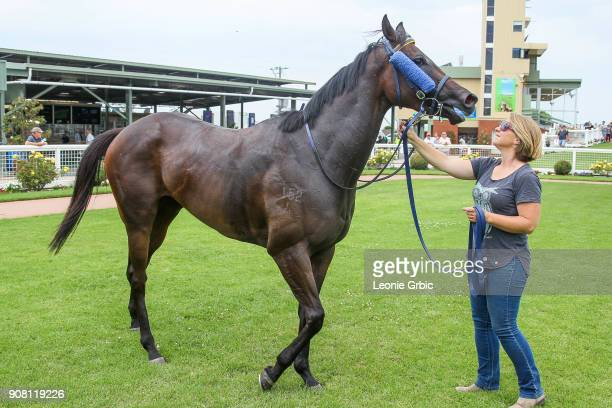 Neurotic after winning the WorkforceXS 3YO F Maiden Plate at Sale Racecourse on January 21 2018 in Sale Australia