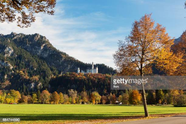 Neuschwanstein castle and alps in autum colors (Allgäu/ Bavaria/ Germany)