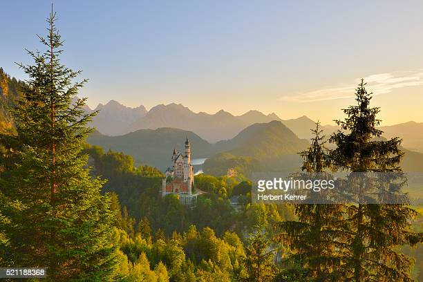 neuschwanstein castle at sunrise - reise stock pictures, royalty-free photos & images