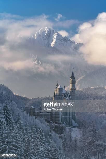 neuschwanstein castle, bavaria, germany, europe - achim thomae stock-fotos und bilder