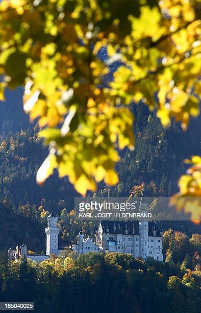 Neuschwanstein Castle can be seen behind autumn colored trees on October 17 2013 near Hohenschwangau southern Germany The 19th century Romanesque...
