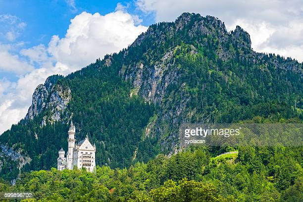 neuschwanstein castle - syolacan stock pictures, royalty-free photos & images