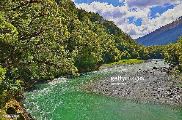 Neuseeland im Mount Aspiring National Park Der Makarora River muendet in den Laka Wanaka den viiertgroessten Binnensee Neuseelands