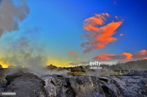NeuseelandAbend im Whakarewarewa Thermal Reserve dem bedeutendsten Thermalgebiet im Raum Rotorua