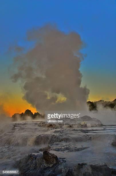 NeuseelandGeysir im Whakarewarewa Thermal Reserve dem bedeutendsten Thermalgebiet im Raum Rotorua