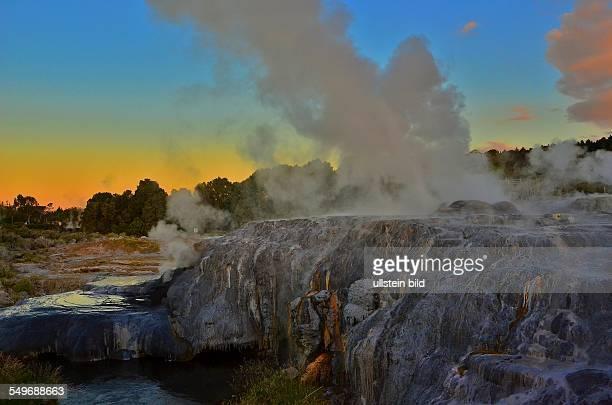 NeuseelandSinterterrassen und Geysire im Whakarewarewa Thermal Reserve dem bedeutendsten Thermalgebiet im Raum Rotorua