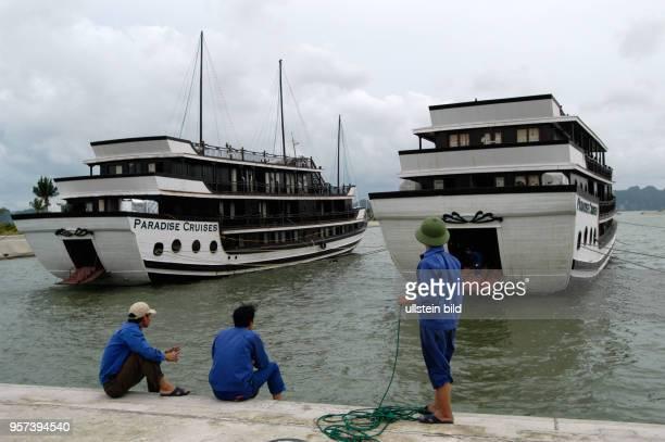 Neuzeitliche Dschunken im Mini-Hafen auf der Insel Tuan Chau, aufgenommen im Oktober 2008. Die Insel liegt in der Halong-Bucht am Südchinesischen...
