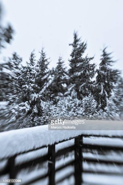 nevada en el balcón - radicella photos et images de collection