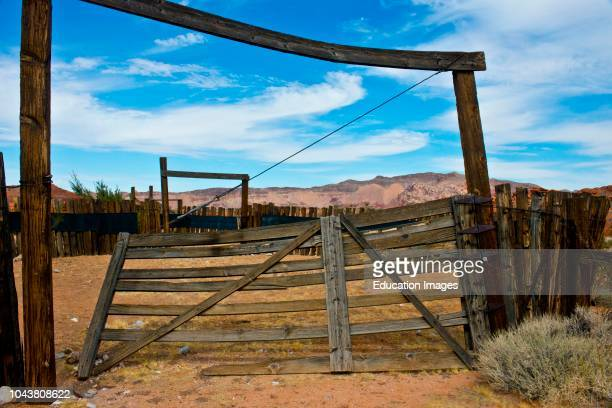 Nevada Mesquite Gold Butte National Monument Mud Road Cattle Corral