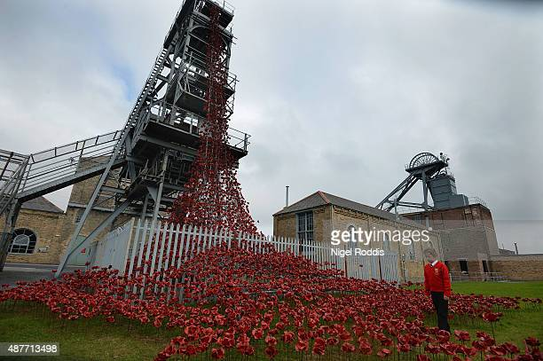 Neve Stuart of Ashington views the 'Weeping Window' part of the sculpture of poppies from the Tower of London on display at Woodhorn Museum on...