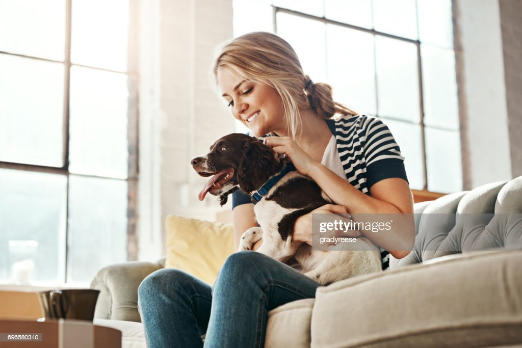 Never mind diamonds, dogs are a girl's best friend : Stock Photo
