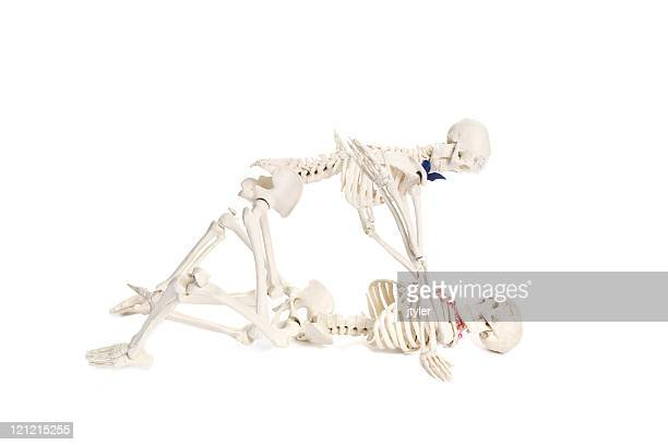 never too old - funny skeleton stock photos and pictures