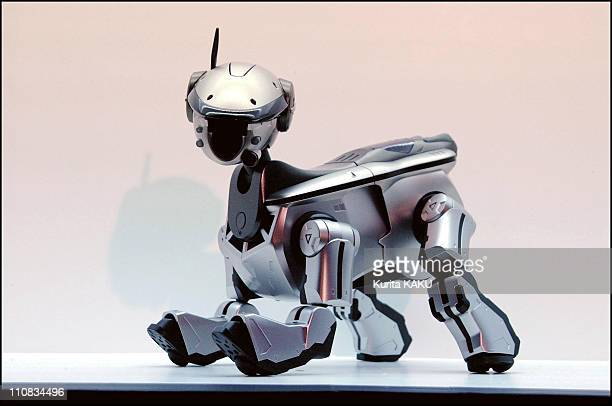 New Aibo At Sony Building Ginza Tokyo In Japan On November 08 2001