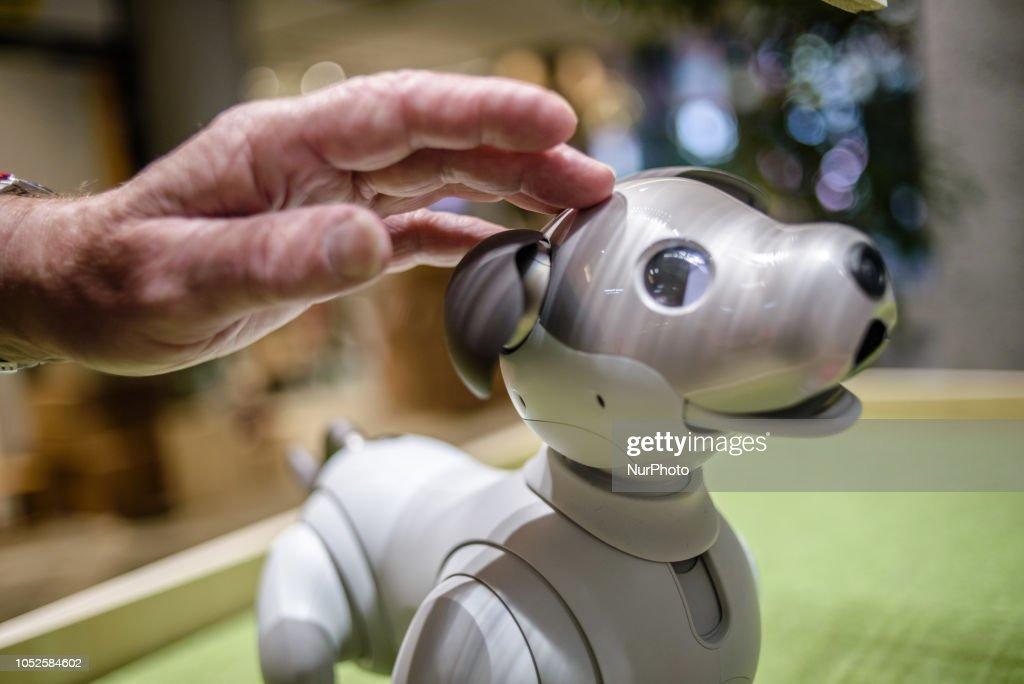 Service Robots In Tokyo : Nieuwsfoto's