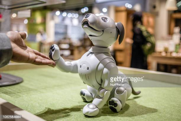 New Aibo pet robot is shown in the Sony Square Shibuya Project in Tokyo Japan in October 2018