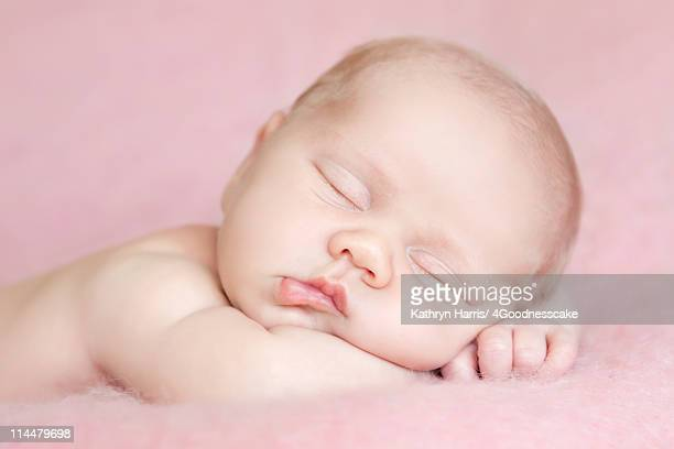 new born baby girl - 7894 stock pictures, royalty-free photos & images