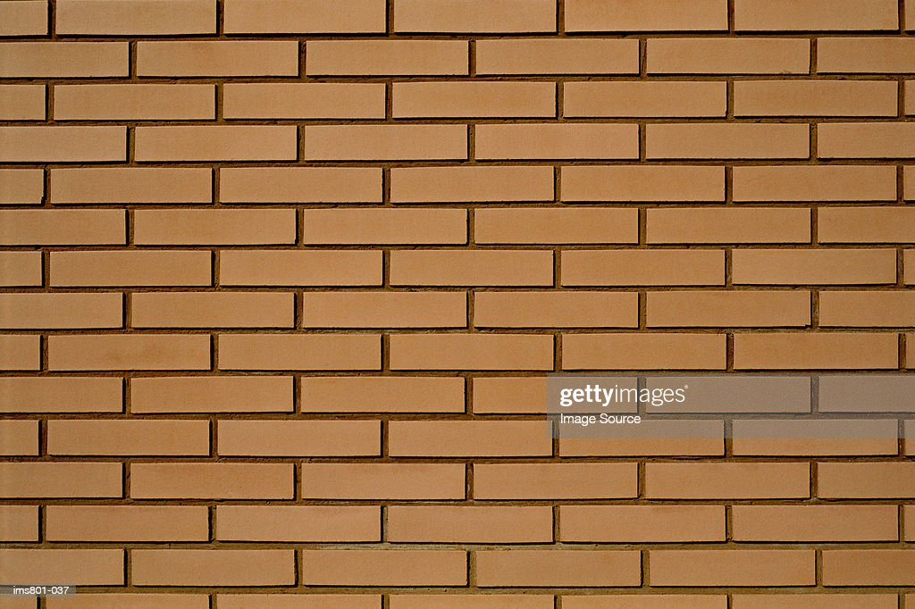 New brick wall : Foto de stock