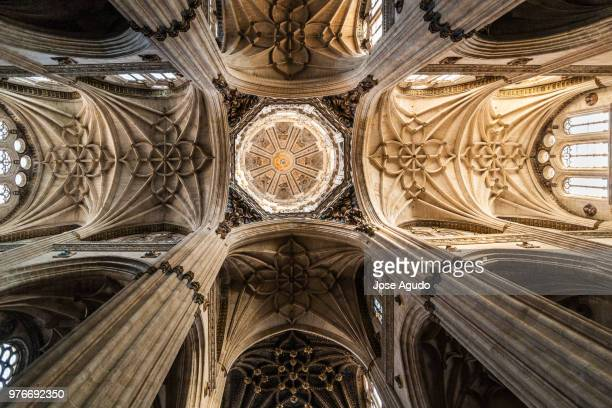 New Cathedral of Salamanca ceiling, Salamanca, Castile and Leon, Spain