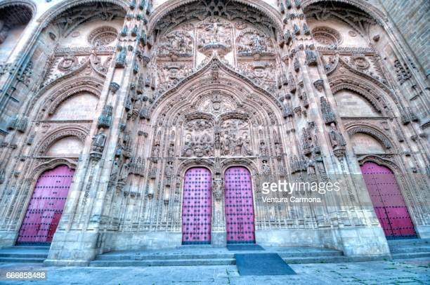 new cathedral of salamanca, spain - akademisches lernen stock pictures, royalty-free photos & images