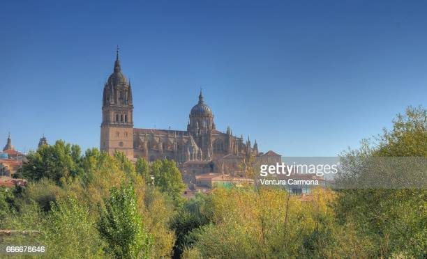 new cathedral of salamanca, spain - geschichtlich stockfoto's en -beelden